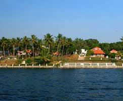 Honeymoon In Calicut