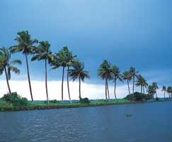 Calicut Honeymoon Tour